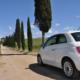 4 vernieuwingen voor Sunny Cars!